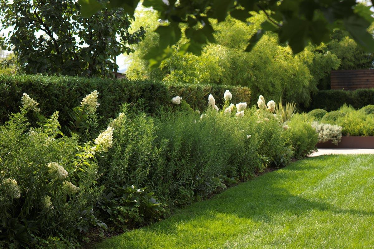 Orto giardino montello kristian buziol - L orto in giardino ...